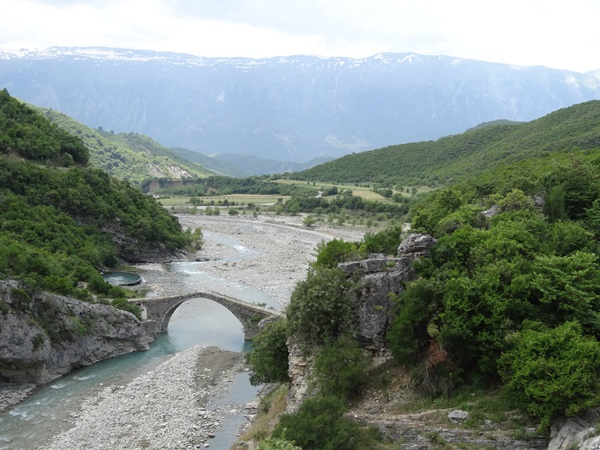 14 Albania